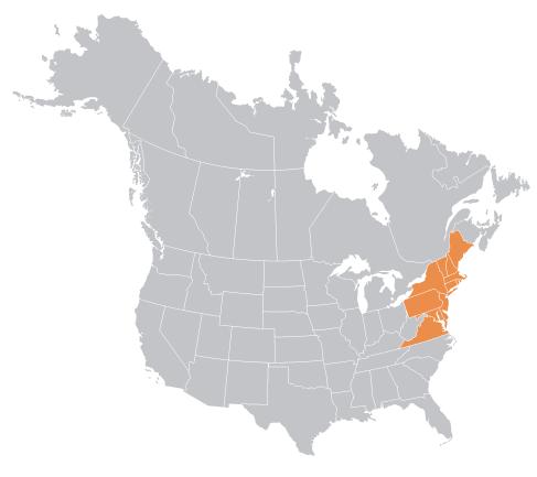 Northeast north america