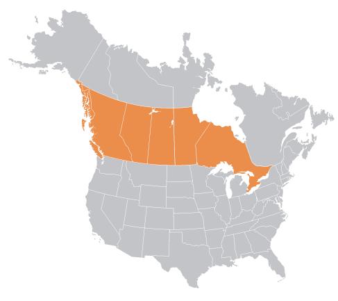 Aurora Plastics Ontario and Western Canada